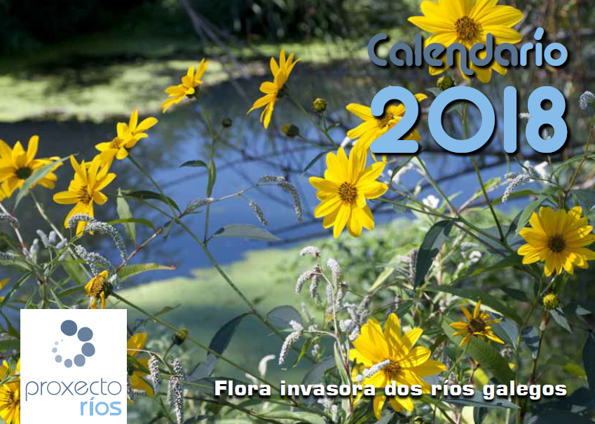 captura_capa_calendario.png