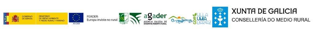 logos_gdr20.jpg